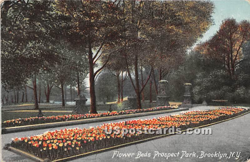 Flower Beds, Prospect Park - Brooklyn, New York NY Postcard