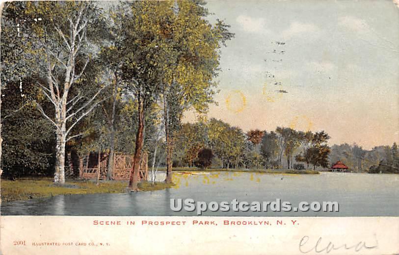 Prospect Park - Brooklyn, New York NY Postcard