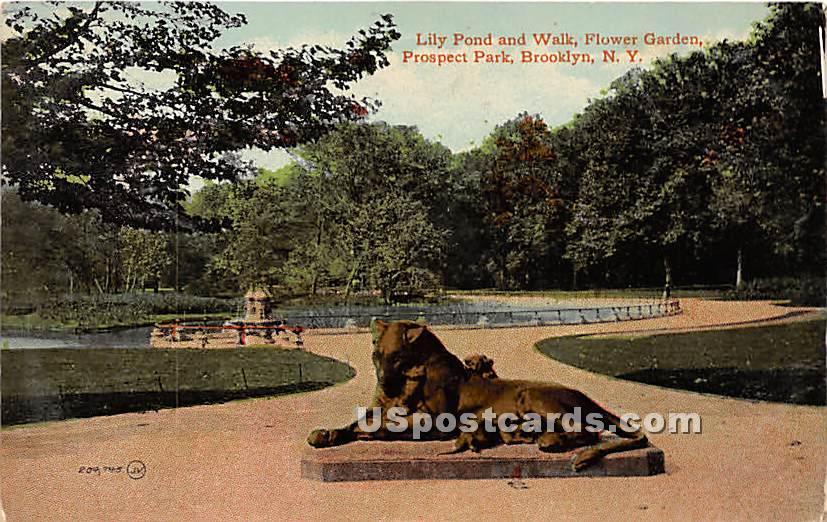 Lily Pond, Prospect Park - Brooklyn, New York NY Postcard