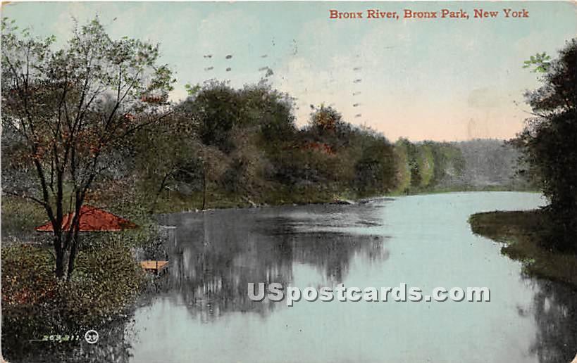 Bronx River - Bronx Park, New York NY Postcard