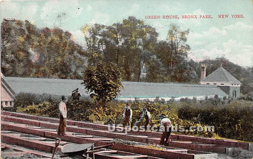 Green House - Bronx Park, New York NY Postcard