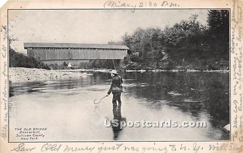 The Old Bridge - Beaverkill, New York NY Postcard
