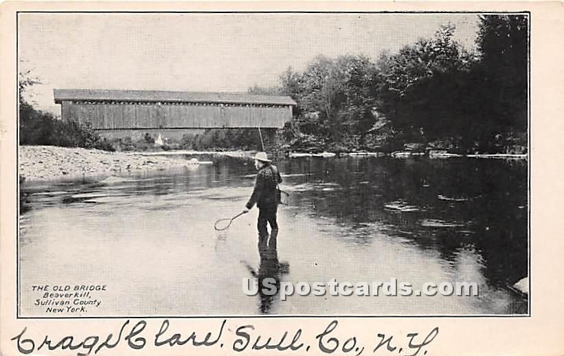 The Old Bridge - Beaverkill, New York NY Postcard