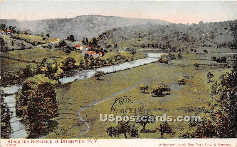 Along the Neversink - Bridgeville, New York NY Postcard