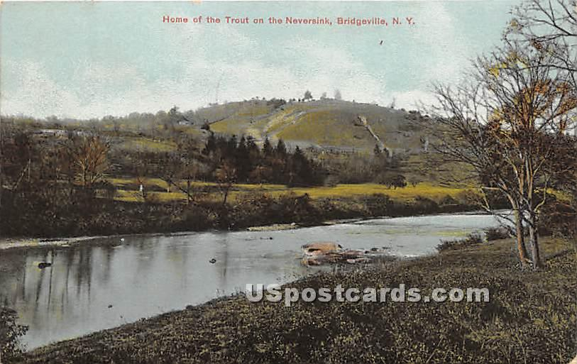 Home of the Trout on the Neversink - Bridgeville, New York NY Postcard