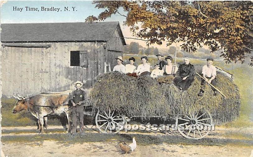 Hay Time - Bridgeville, New York NY Postcard
