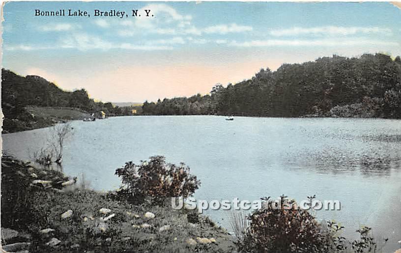 Bonnell Lake - Bridgeville, New York NY Postcard