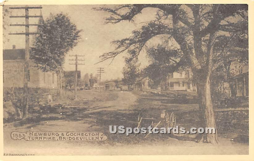 Newburg & Cochecton - Bridgeville, New York NY Postcard