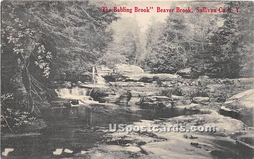 Babbling Brook - Beaver Brook, New York NY Postcard