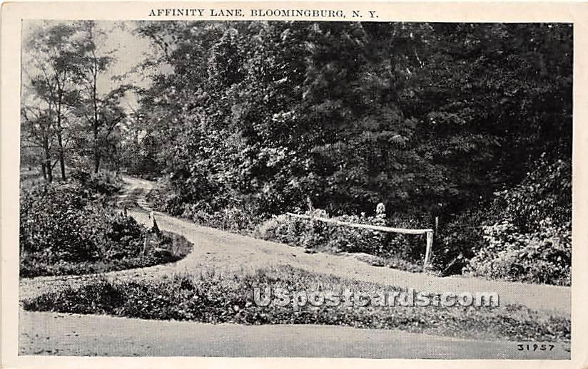 Affinity Lane - Bloomingburg, New York NY Postcard