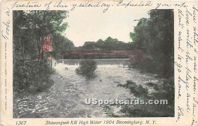 Shawangunk Kill High Water 1904 - Bloomingburg, New York NY Postcard