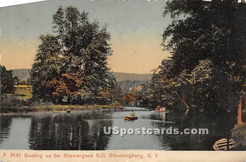 Boating on the Shawangunk Kill - Bloomingburg, New York NY Postcard