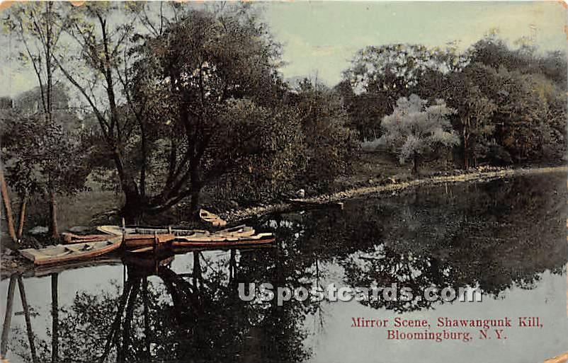 Mirror Scene - Bloomingburg, New York NY Postcard