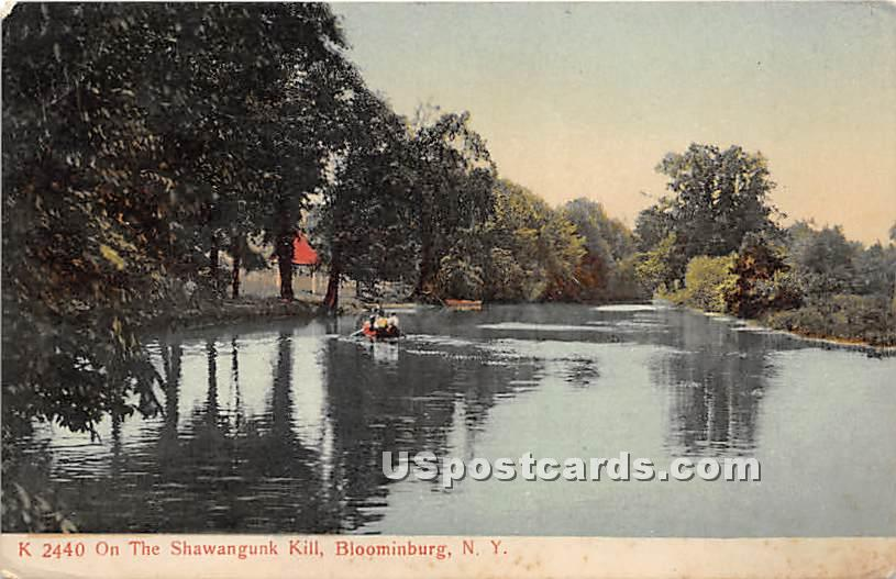 On the Shawangunk Kill - Bloomingburg, New York NY Postcard