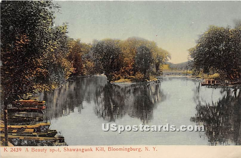 Beauty Spot - Bloomingburg, New York NY Postcard