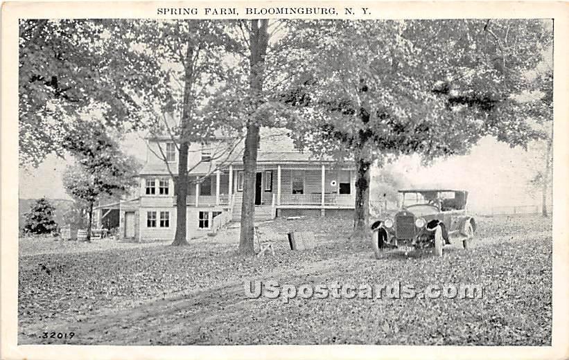 Spring Farm - Bloomingburg, New York NY Postcard