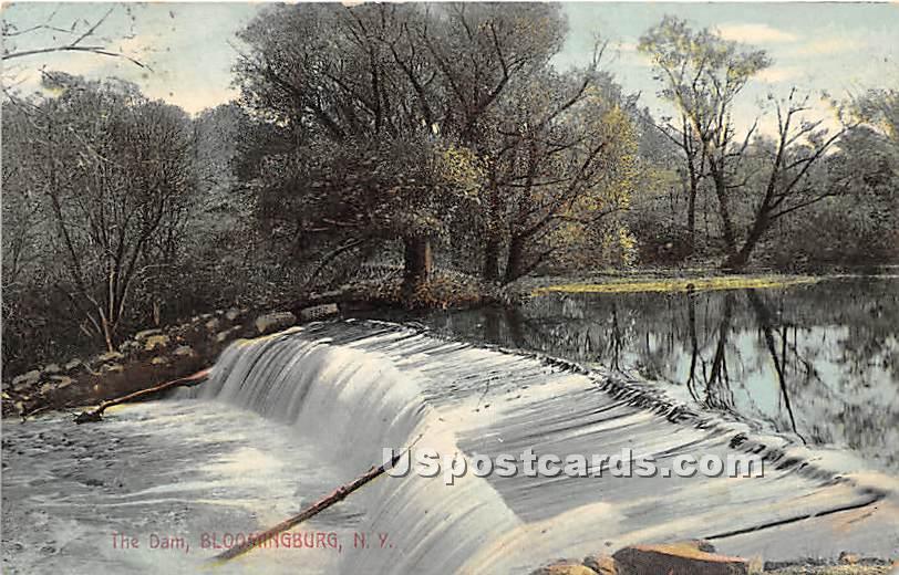 The Dam - Bloomingburg, New York NY Postcard