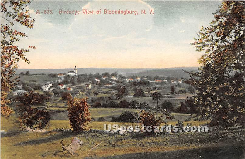 Birds Eye View - Bloomingburg, New York NY Postcard