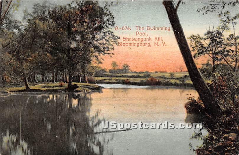 Swimming Pool - Bloomingburg, New York NY Postcard