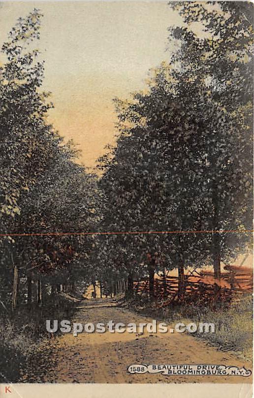 Beautiful Drive - Bloomingburg, New York NY Postcard