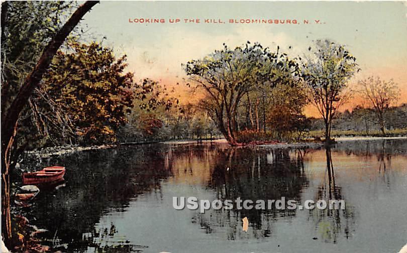 Looking up the Kill - Bloomingburg, New York NY Postcard