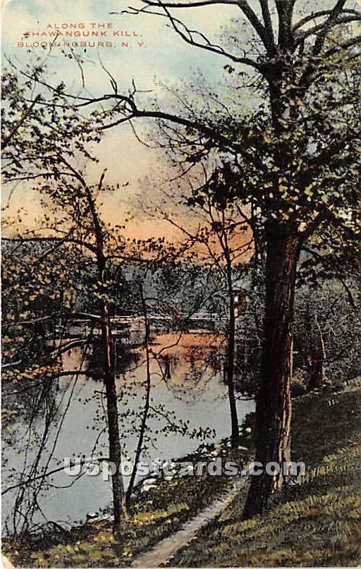 Along the Shawangunk Kill - Bloomingburg, New York NY Postcard