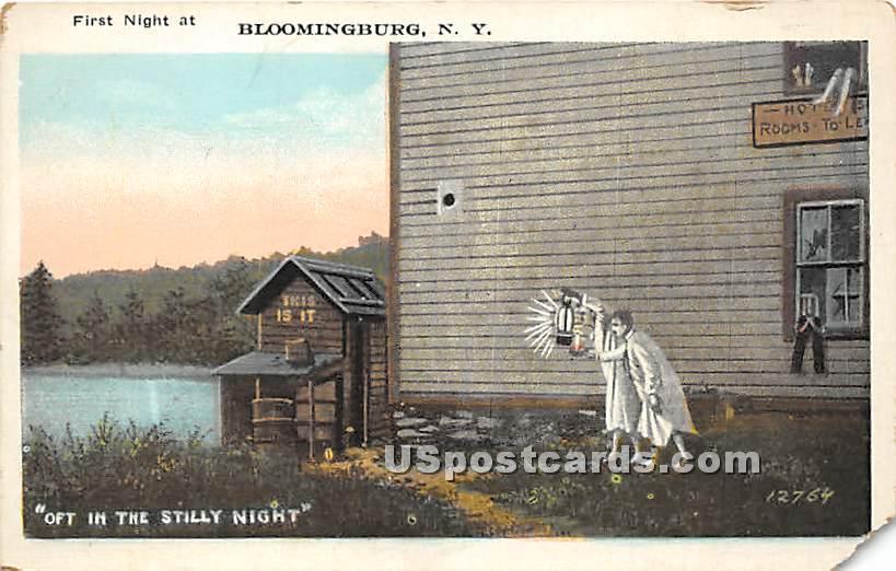 First Night At - Bloomingburg, New York NY Postcard