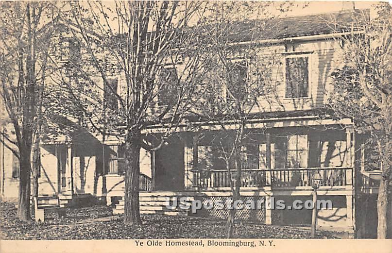 Ye Olde Homestead - Bloomingburg, New York NY Postcard