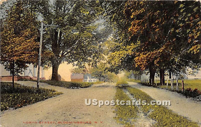 North Street - Bloomingburg, New York NY Postcard
