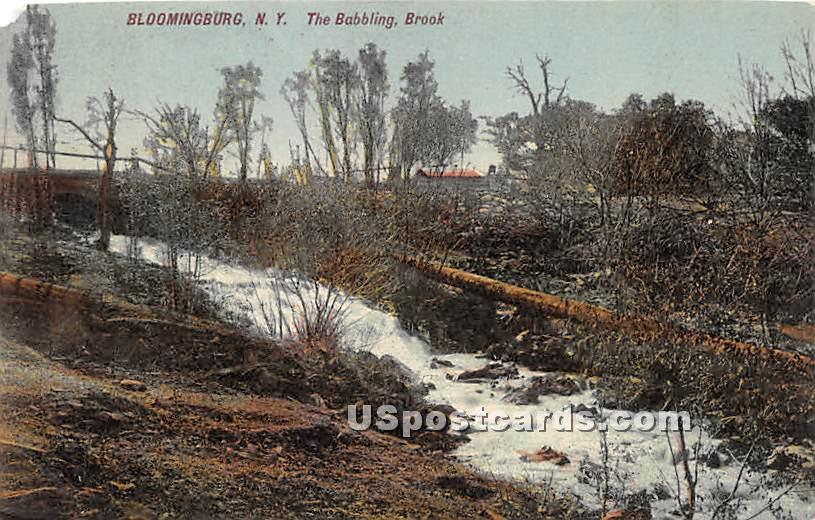Babbling Rock - Bloomingburg, New York NY Postcard