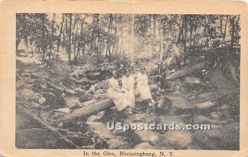 In the Glen - Bloomingburg, New York NY Postcard