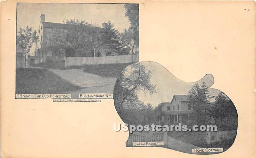 Old Homestead - Bloomingburg, New York NY Postcard