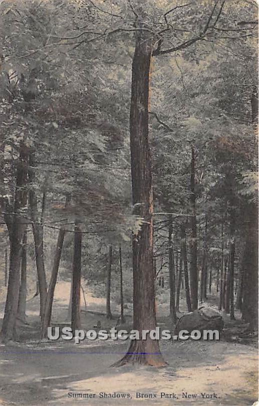 Summer Shadows - Bronx Park, New York NY Postcard