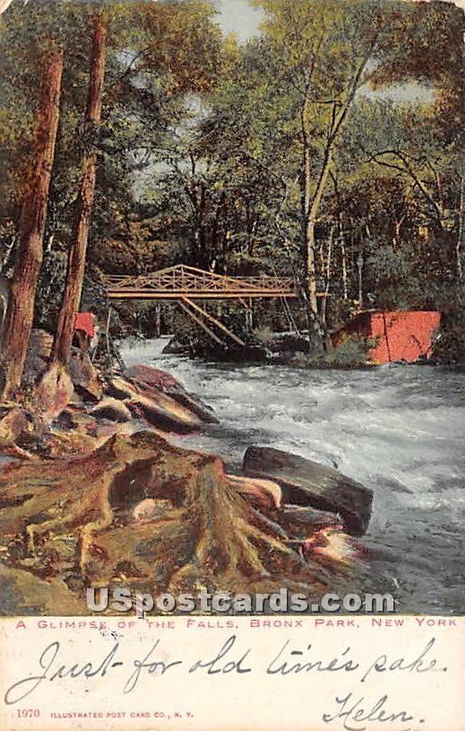 Falls - Bronx Park, New York NY Postcard