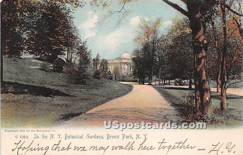 NY Botanical Gardens - Bronx Park, New York NY Postcard