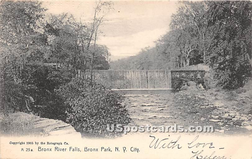 Bronx River Falls - Bronx Park, New York NY Postcard