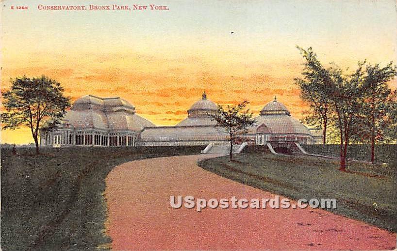 Conservatory - Bronx Park, New York NY Postcard