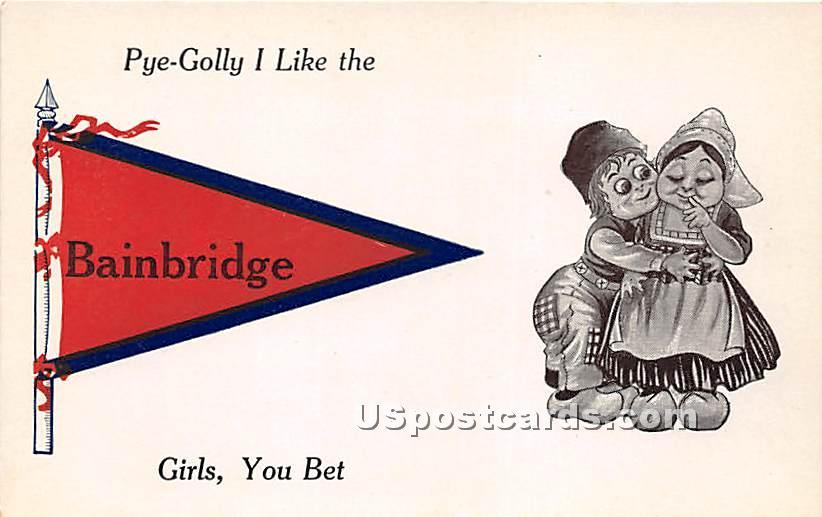 Bainbridge, New York NY Postcard