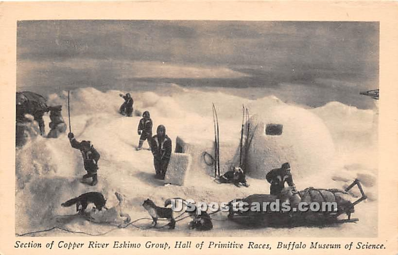 Copper Riveer Eskimo Group, Hall of Primitive Races, Buffalo Museum of Science - New York NY Postcard