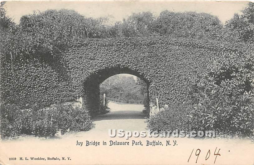 Ivy Bridge, Delaware Park - Buffalo, New York NY Postcard