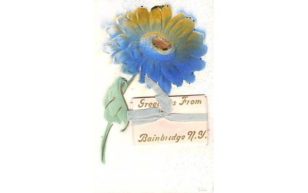 Greetings From Bainbridge, New York Postcard