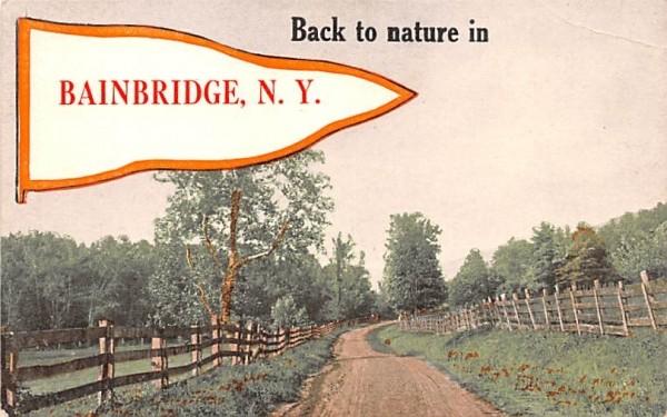 Back to Nature Bainbridge, New York Postcard