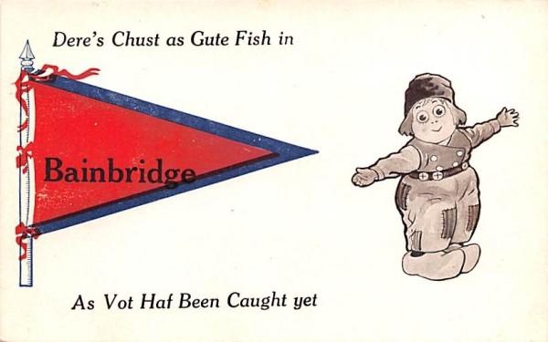 Dere's Chust as Gute Fish Bainbridge, New York Postcard