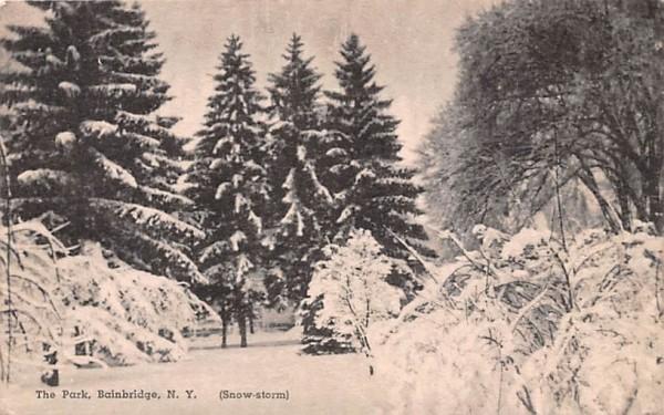 The Park Bainbridge, New York Postcard
