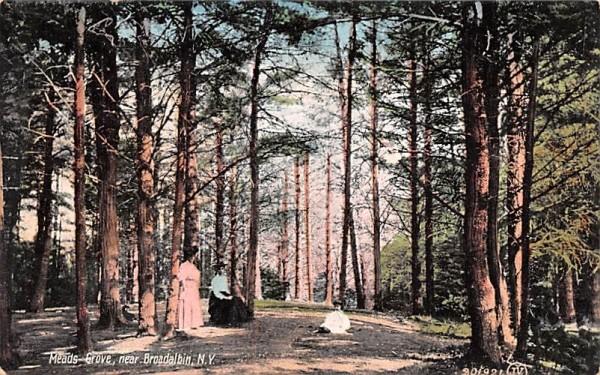 Meads Grove Broadalbin, New York Postcard