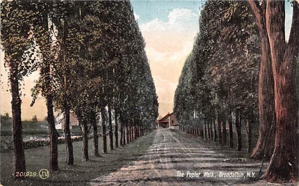 The Poplar Walk Broadalbin, New York Postcard