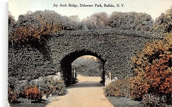 Ivy Arch Bridge Buffalo, New York Postcard