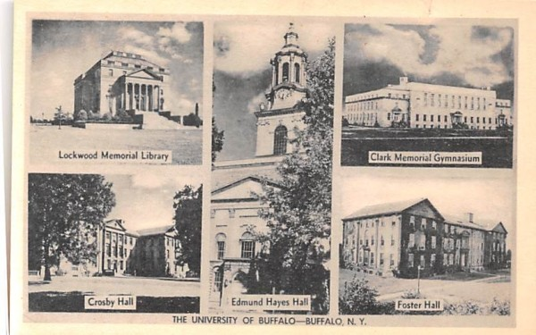 The University of Buffalo New York Postcard