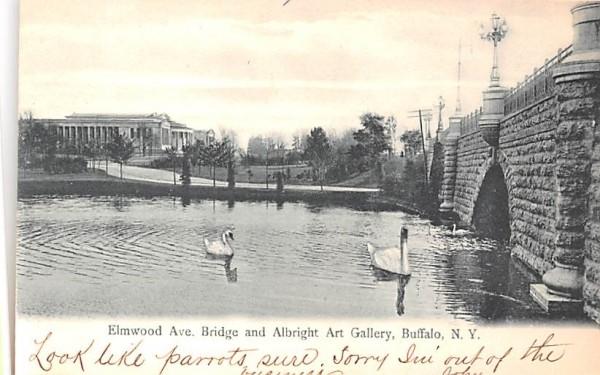 Elmwood Avenue Bridge Buffalo, New York Postcard