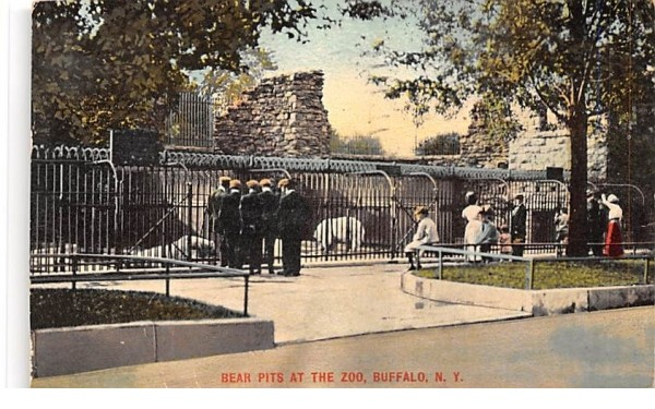 Bear Pits at the Zoo Buffalo, New York Postcard